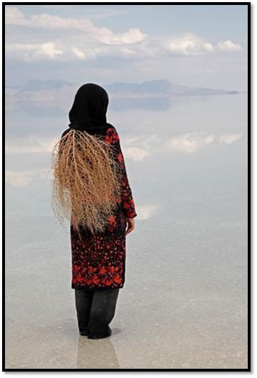 Fairy, Uremia Salt lake, 2009