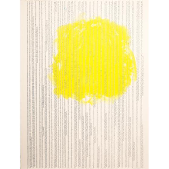 %22Proceso IV%22, 2013, Serie- Procesos Acrílico y grapas sobre papel de algodón, 57 x 76 cm